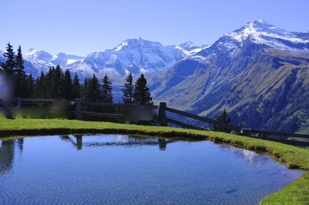 Panorama- Alm
