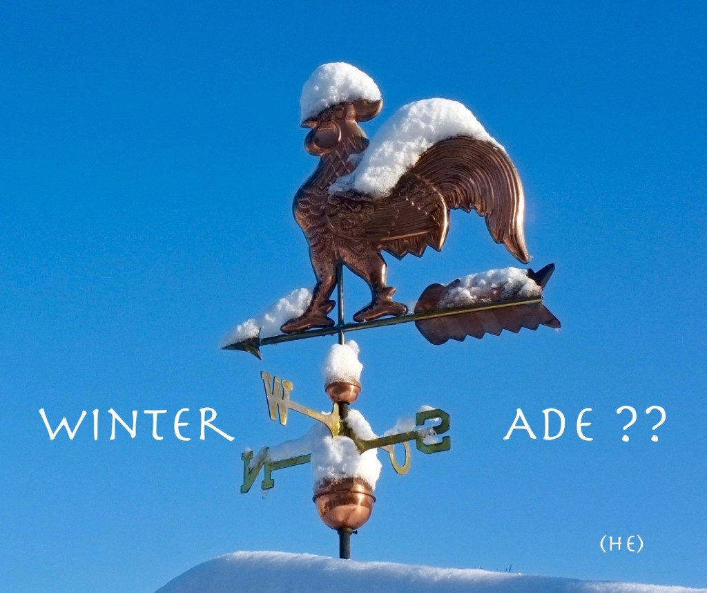Winter Ade ?